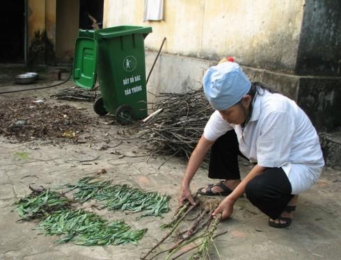 Những cây thuốc từ rừng về được lương y Triệu Thị Liên phơi giữ cẩn thận. Ảnh: Chu Miên.