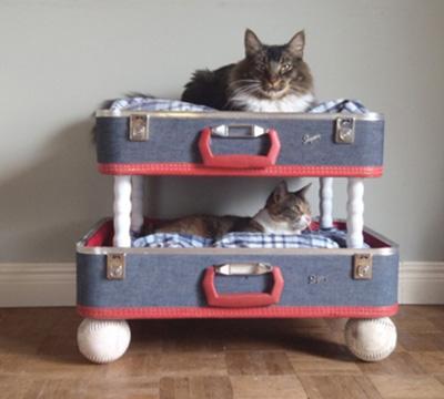 Chỉ việc cố định 4 chân gỗ chắc chắn vào các cạnh góc là bạn có thể biến hai nửa chiếc vali thành giường tầng đáng yêu và sành điệu cho những chú mèo cưng