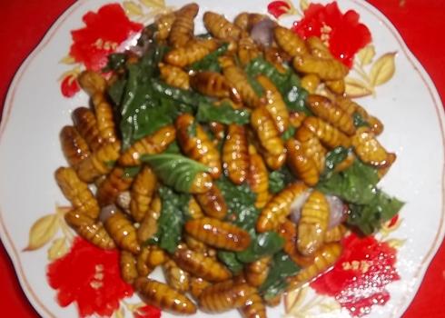 Nhộng tằm xào lá lốt với hương vị thanh mát thích hợp trong những ngày nóng.