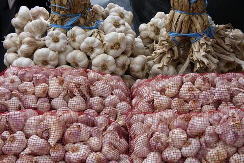 Storing-Garlic-1371530727_500x0.jpg