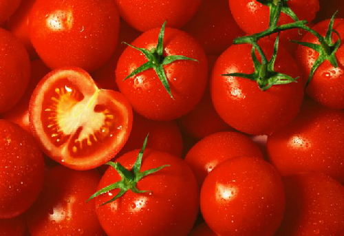 tomatoe-vine-760-1378358131.jpg