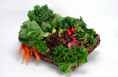 Rau xanh có chứa axit folic, vitamin A và C. Ảnh: lahoripoint