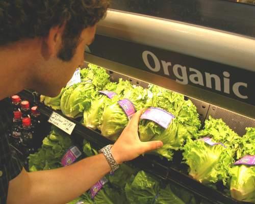 Thực phẩm dán nhãn hữu cơ (organic) là  những thực phẩm không chứa thuốc trừ sâu. Ảnh: Articles.elitefts.com