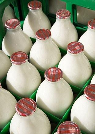 Sữa được sản sinh từ những con bò chăn thả ngoài nông trại thì tốt cho tim mạch hơn. Plus One.