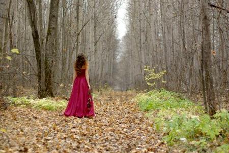 Hãy tưởng tượng bạn đang đi khám phá một khu rừng. Ảnh minh họa: 123rf.