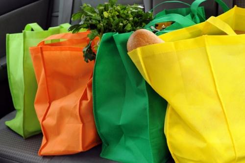 Nên vệ sinh túi thường xuyên giữa những lần sử dụng và phân loại túi dùng cho các mục đích khác nhau như chứa rau hay chứa thịt. Ảnh: northrigdesouth.org