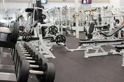 63% dụng cụ phòng gym chứa virus gây cảm lạnh. Ảnh: theweinblog.com