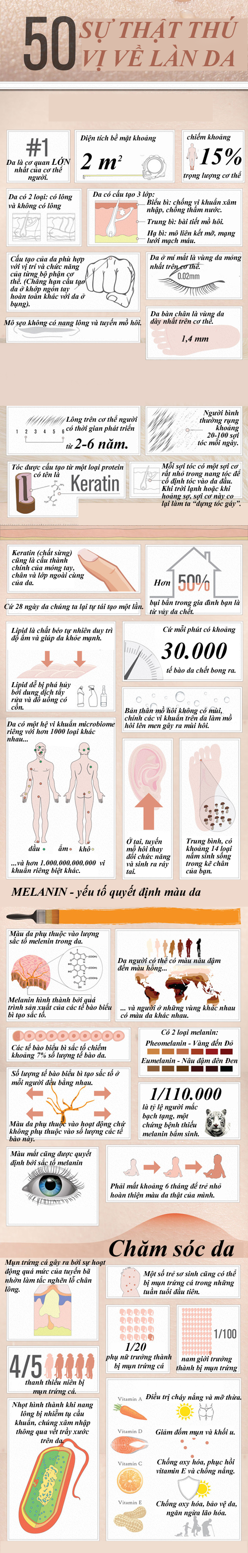 http://m.f13.img.vnecdn.net/2014/03/29/skin-infographic-directory-com-5602-7956-1396054928.png