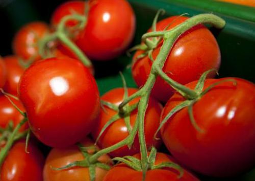Đàn ông ăn cà chua tăng khả năng được làm cha