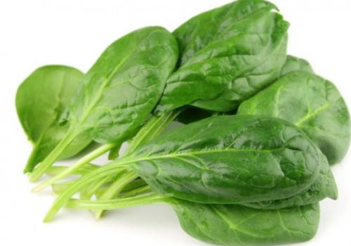Rau cải bó xôi là thực phẩm tốt nhất trong các loại rau. Ảnh: redorbit