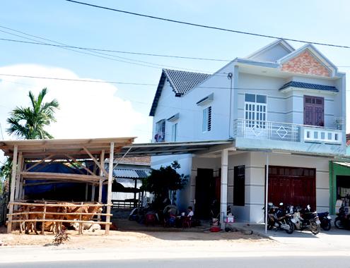 21 5 Anh 10 Cho bo 5591 1400658209 Đến thăm khung cảnh chợ buôn bò ven quốc lộ tại Quảng Ngãi