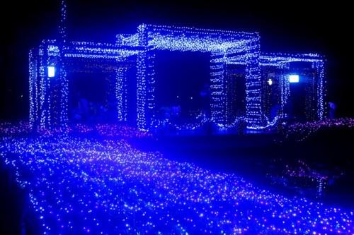 Muốn tạo cảm giác ngày hội, bạn chỉ việc treo các đèn nhỏ li ti lên thân cây không gian của khu vườn trông sẽ khác.