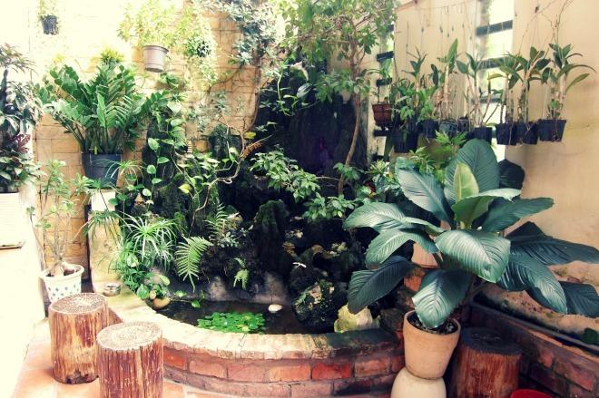 Tạo tiểu cảnh xanh tươi trong vườn phố