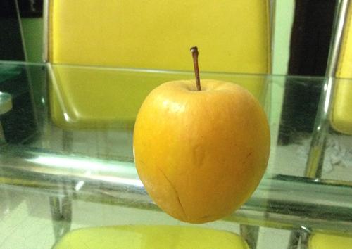 Trái táo để 9 tháng không hỏng
