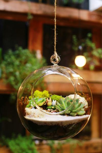 Từ các loại cây rêu, đồ  trang trí đơn giản, bạn có thể tạo ra được những tiểu cảnh dễ thương.