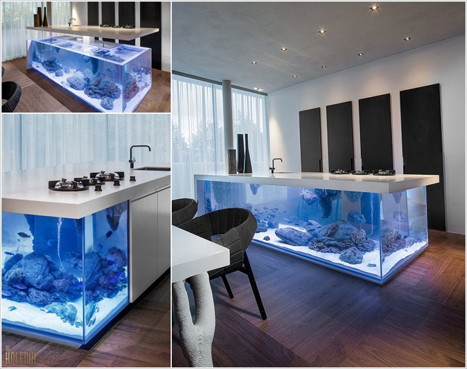 Các ý tưởng bố trí bể cá làm đẹp nhà