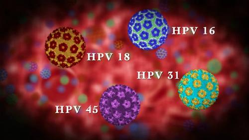 Các quan niệm sai lầm về virus HPV gây ung thư