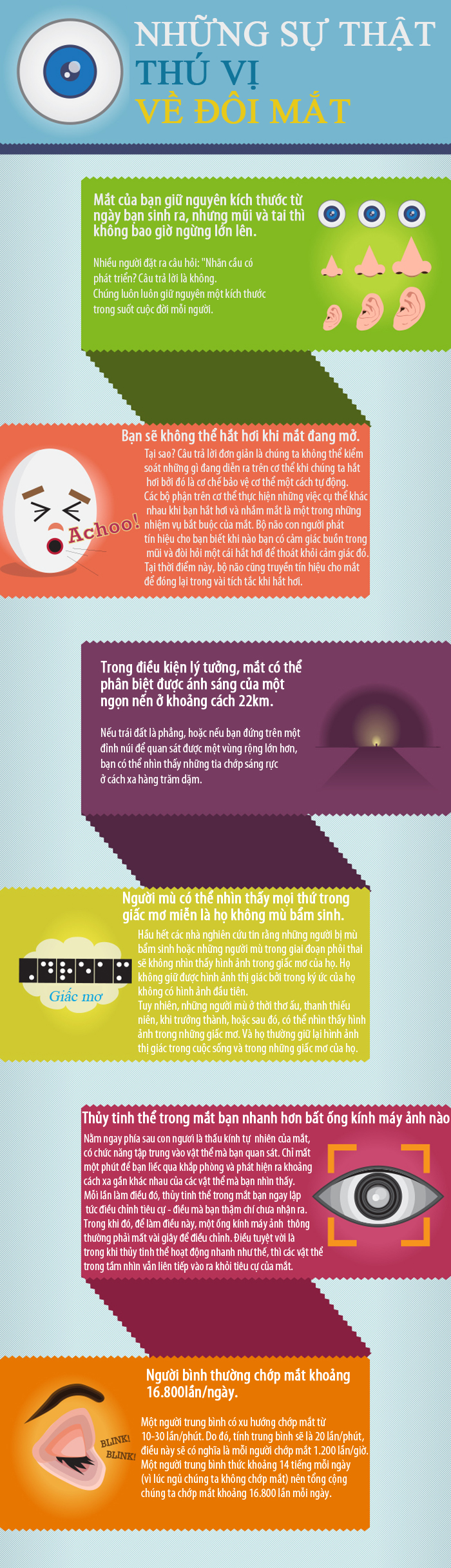 Những sự thật thú vị về mắt