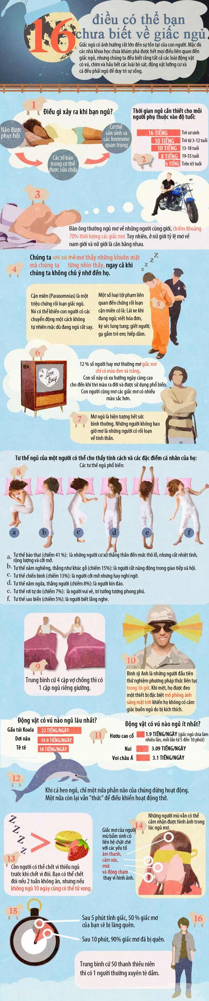 Những điều thú vị về giấc ngủ bạn chưa biết