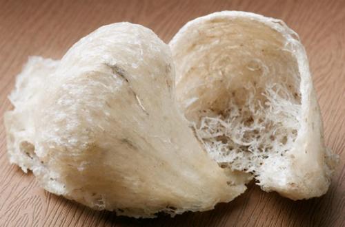 Yến thô (còn nguyên tổ) cần phải làm sạch lông bám và tạp chất.