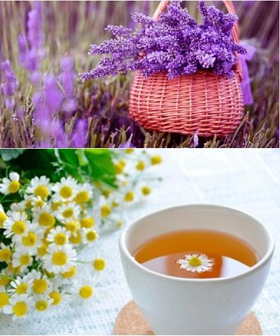 Hoa oải hương có tính diệt khuẩn cao và cúc La Mã giúp chống viêm, giảm đau, nhanh liền sẹo.