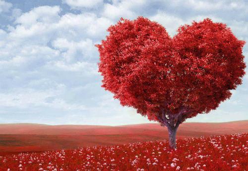 Trái tim được xem là biểu tượng của tình yêu. Ảnh minh họa: funnfun