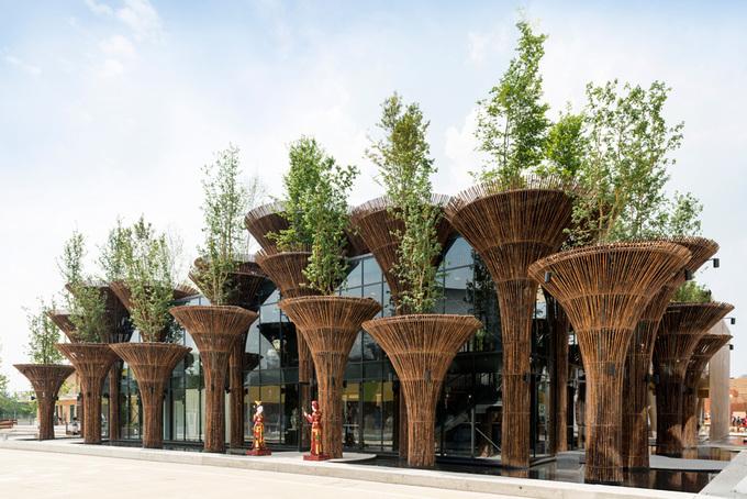 Nhà Việt Nam trồng cây xanh trên mái ở Italy
