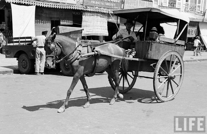 Xe ngựa trên đường phố Sài Gòn xưa