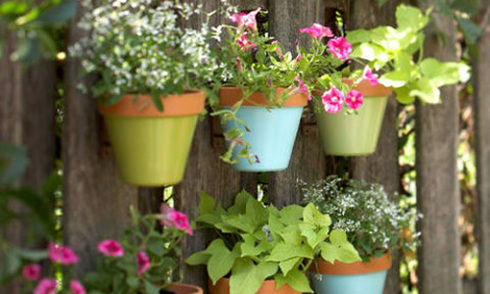 9 ý tưởng làm vườn cây trên các bức tường