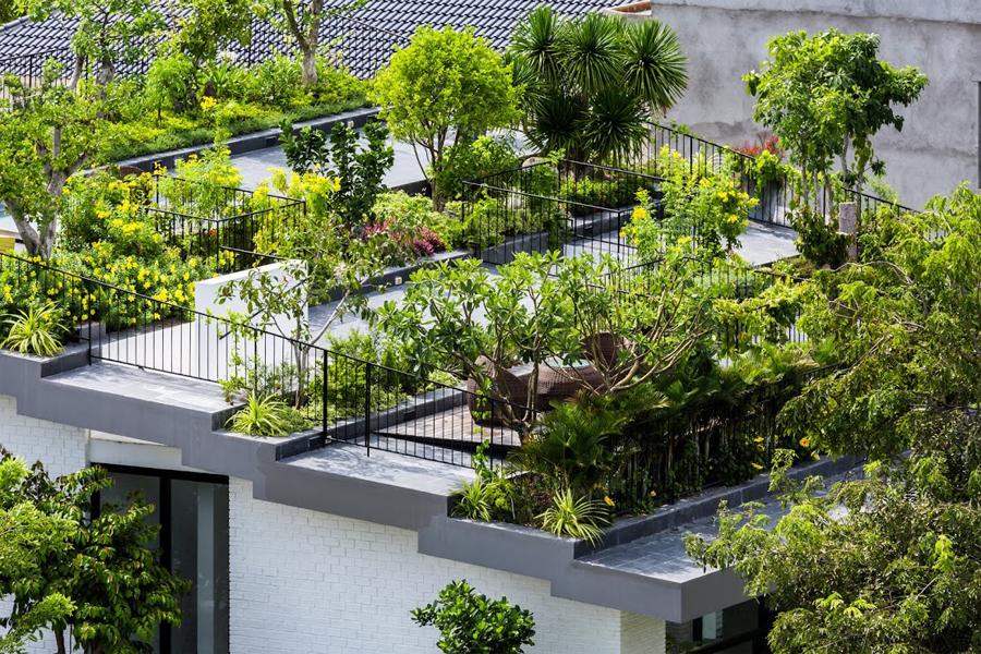 Biệt thự ở Nha Trang với công viên nhỏ trên mái nhà