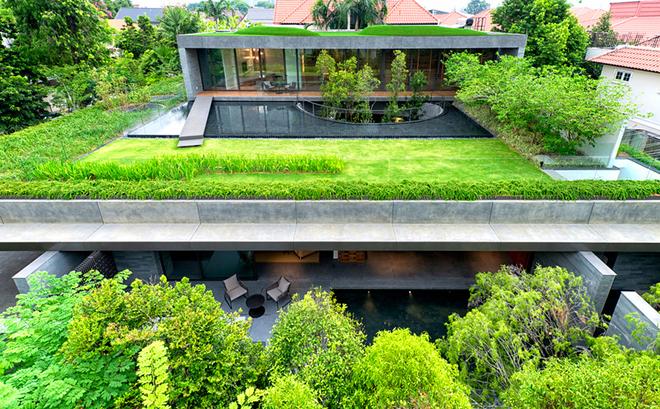 Công trình ở Singapore do Farm Architects thiết kế có nhiều điểm đặc biệt. Từ trên cao nhìn xuống, các khối bê tông, gạch đá gần như biến mất bởi mái nhà được phủ cây xanh, mặt nước