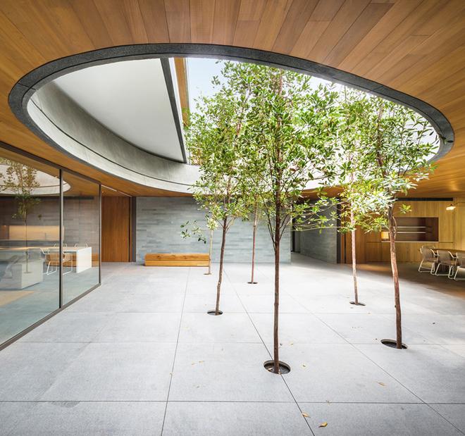 Ở giữa khối nhà thứ nhất có khoảng giếng trời cây xanh thoáng đãng. Giữa nhà và sân được ngăn cách bằng hệ cửa kính có thể mở rộng chan hòa ánh sáng và khí trời