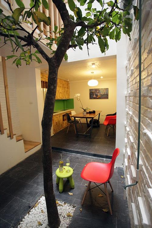 Trồng cây to giữa lòng nhà ống 45 m2 ở Hà Nội
