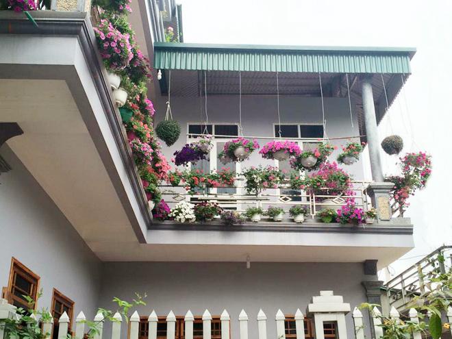 Ngôi nhà 3 tầng kín hoa khắp các ban công