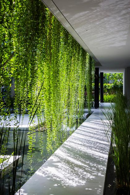 3 2 1531 1451557630 Cùng nhìn qua khu nhà phủ cây xanh mướt đoạt giải Công trình của năm