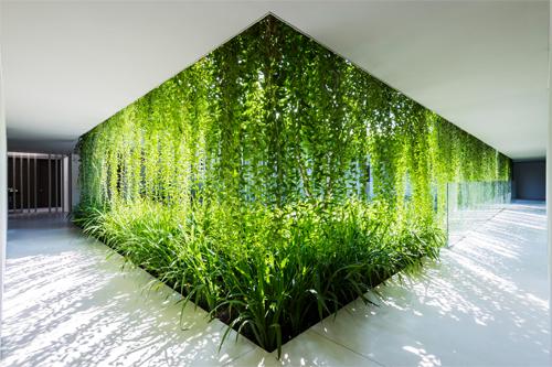 Untitled 1 9201 1451557629 Cùng nhìn qua khu nhà phủ cây xanh mướt đoạt giải Công trình của năm