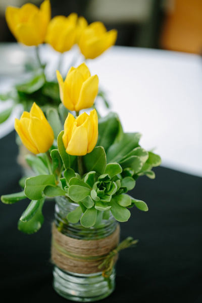 du-kieu-cam-hoa-tulip-de-nhung-dep-sang-trong-9