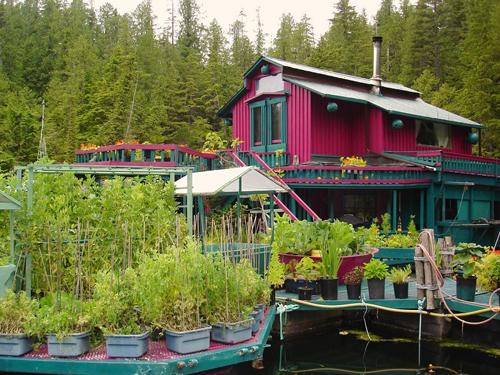 Khu nhà với tông hồng, xanh nằm trên vùng sông nước mênh mông, bao bọc bởi những khoảng cây xanh mướt.