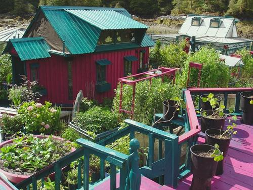 Họ tự trồng rau cho bữa ăn hàng ngày và khai thác điện từ các tấm pin năng lượng mặt trời.