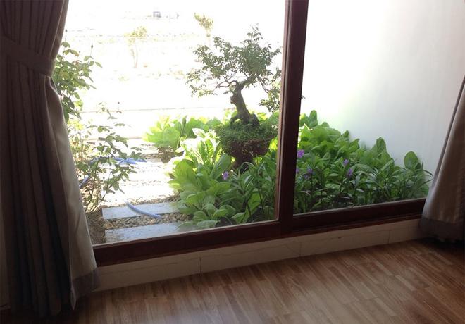 Ngôi nhà ống ở Nha Trang có mọi phòng đều mở ra vườn