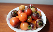 Tại sao tôi trồng cà chua đen lại ra màu cam?