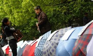 Phụ huynh Trung Quốc thi nhau trải ô, tuyển bạn đời cho con