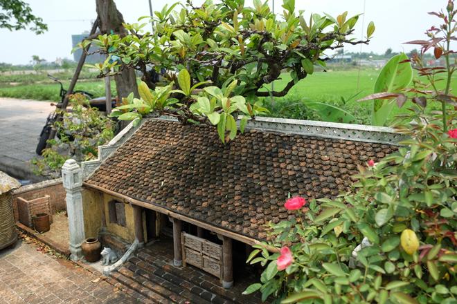 Nhà 2 mét vuông có sân vườn, ao bèo gây ngỡ ngàng
