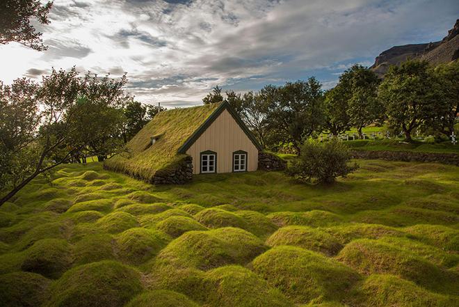 1 1467009726 660x0 Cùng nhìn qua những ngôi nhà được bao trùm bởi lớp cỏ dày