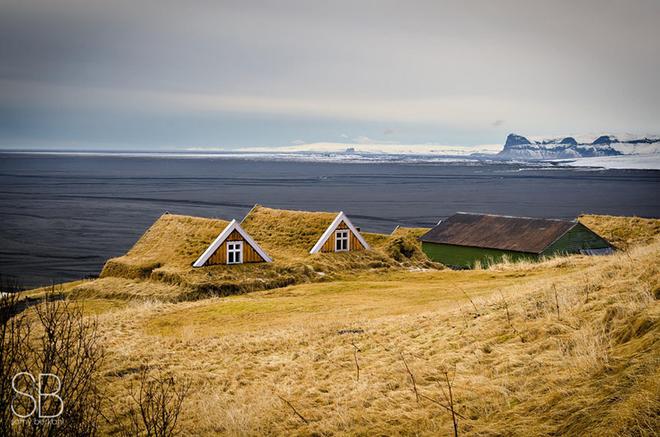 18 1467009730 660x0 Cùng nhìn qua những ngôi nhà được bao trùm bởi lớp cỏ dày