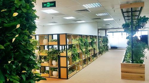 Các loại cây nhiệt đới khiến nhân viên và khách đến HVG Office cảm giác như đứng giữa khu rừng nguyên sinh. Hương thơm của các loại cây cỏ xua tan căng thẳng, áp lực trong công việc, cũng như tiếng ồn ào ngoài phố thị.