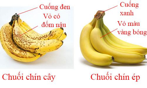 phan-biet-qua-chin-gia-tu-nhien-va-chin-ep