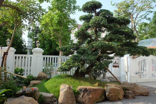 nhat 2 4837 1473906334 - Vườn Nhật 120m2 trong biệt thự Hà Nội