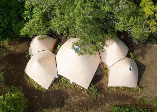Nhà gỗ trong rừng Nhật với bể bơi hình xoáy ốc