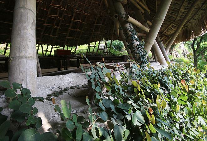 Ngôi nhà lá ở Hoà Bình nhận 2 giải thưởng quốc tế